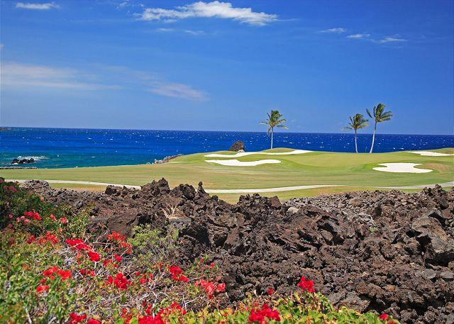Signature Hole with ocean views - SPRING SPECIAL 7TH NIGHT FREE-Ocean front overlooking Signature Hole! - Kamuela - rentals