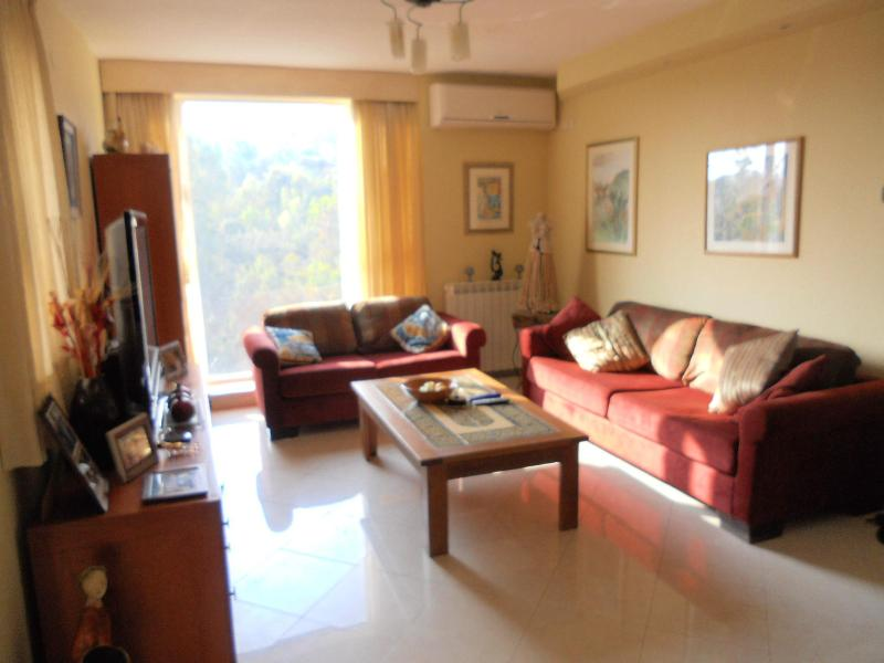another view of the living room - Spacious  & Airy 3 Bedroom Apartment in Jerusalem - Jerusalem - rentals