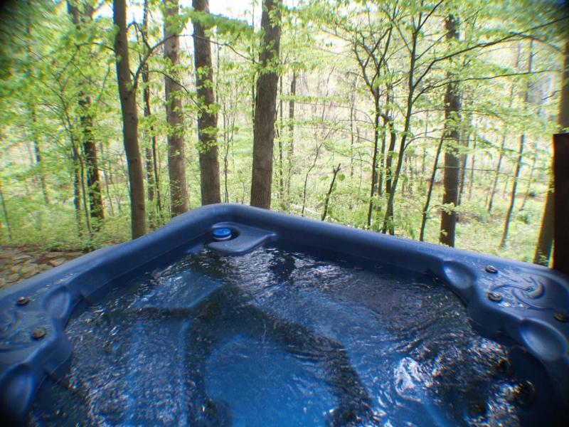 Hot Tub sits on the ravine with beautiful views! - Aqua Turtle Creek Hideaway $400/nt 5/22-5/25 - New Buffalo - rentals
