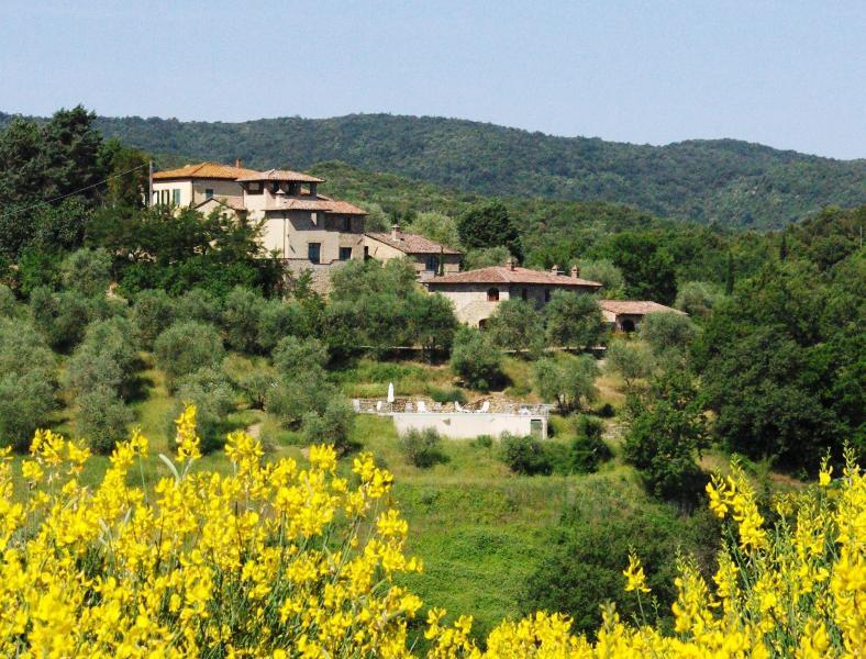 The Canaiolo at La Busca - Image 1 - Murlo - rentals