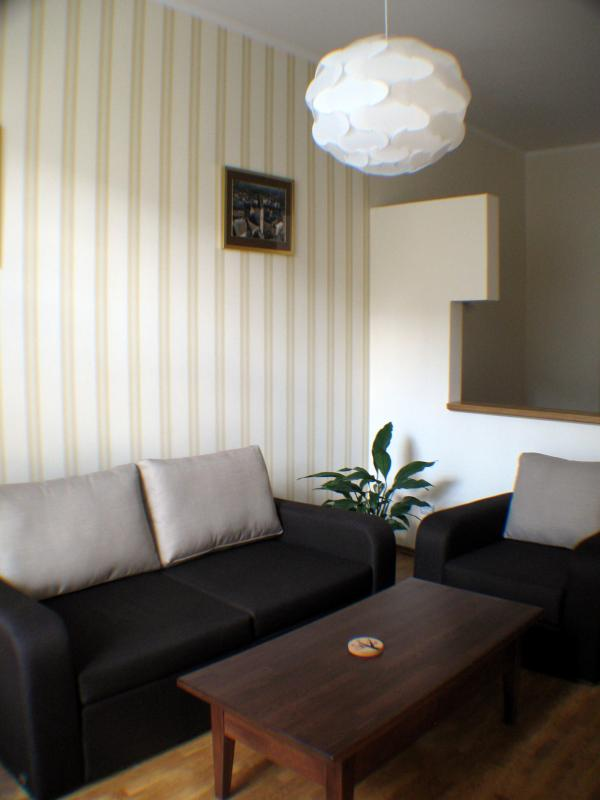 Cozy apartment in the very center - Image 1 - Lviv - rentals
