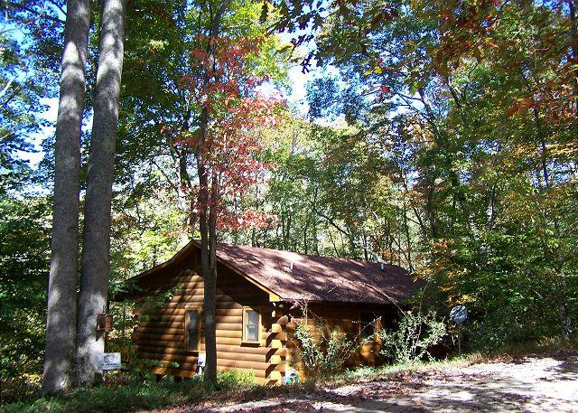 Hummingbear Ledge at Cherry Log Mountain - Hummingbear Lodge- The perfect vacation rental cabin in N GA for 2 couples - Cherry Log - rentals