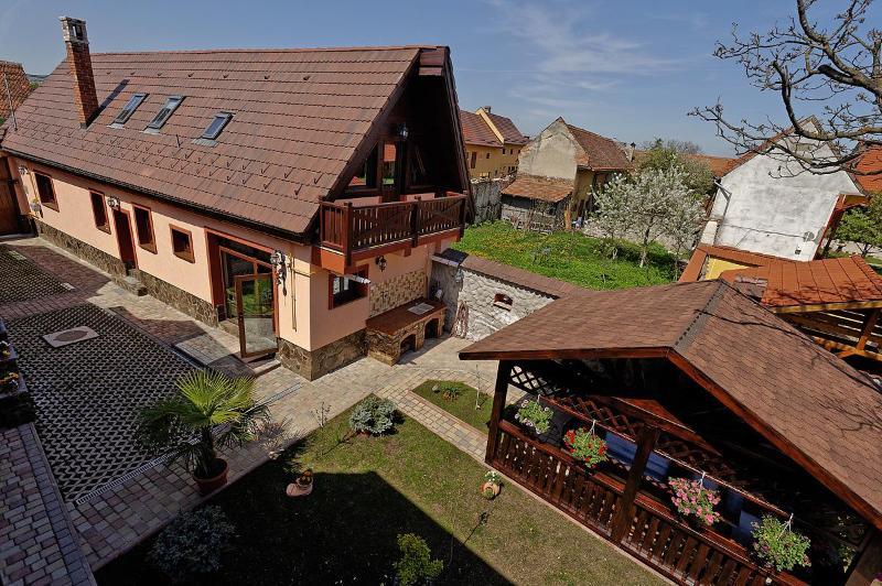 Ambient Villa 5* - Image 1 - Brasov - rentals