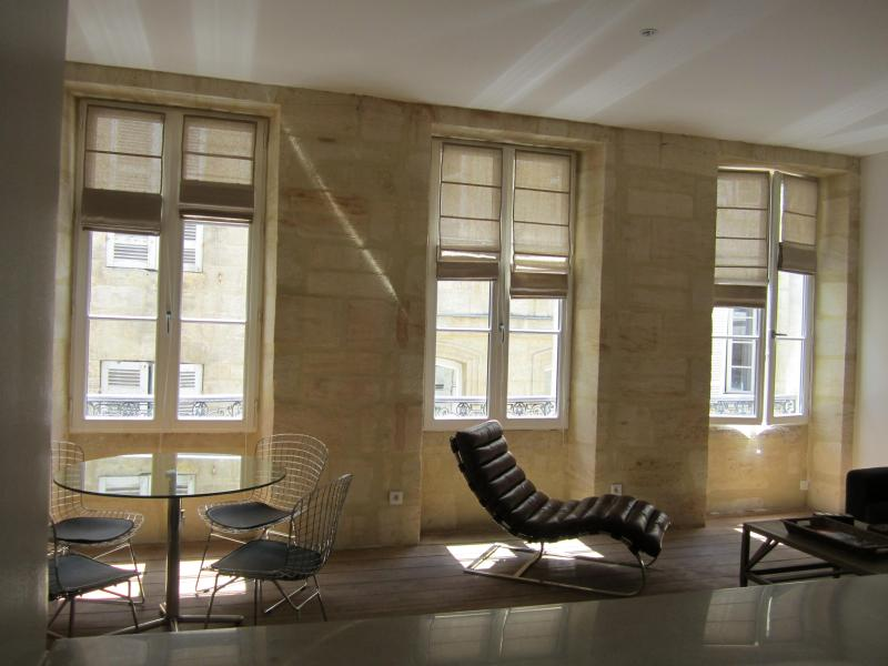 Beautiful apartment in the heart of Bordeaux - Image 1 - Bordeaux - rentals