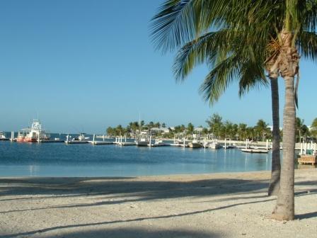 Beachside - Beachfront Cayman Kai Condo- Discounted Rates! - North Side - rentals