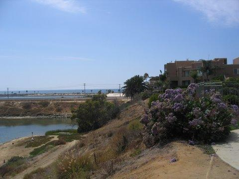 Outside of building - Close to the Beach/Village Carlsbad - Carlsbad - rentals