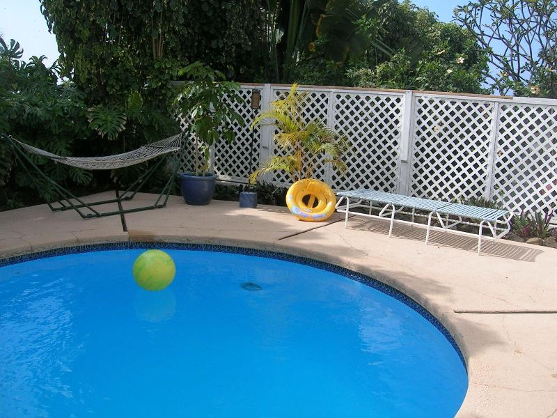 Spacious 1B w/ Pool & Yard at 800ft - Image 1 - Kailua-Kona - rentals