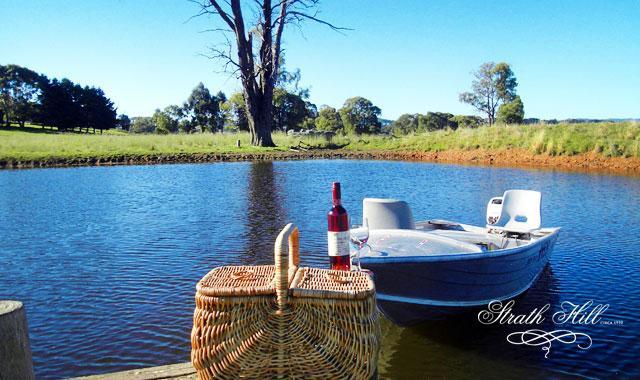 Our Lake House overlooks this lake which has a jetty and boat for your use - great fun - Strath Hill Accommodation - Strathbogie - rentals