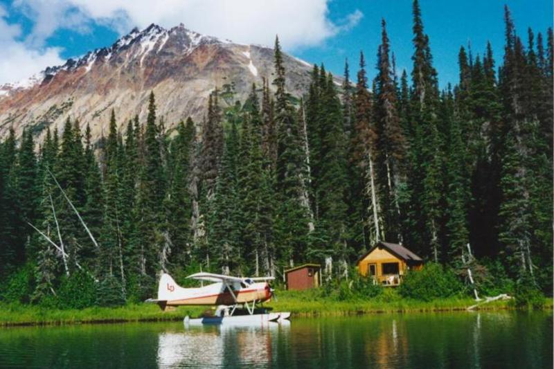 Beaver at the Dock - Coles Lake Lodge- Fly In-Remote Wilderness Getaway - Burns Lake - rentals