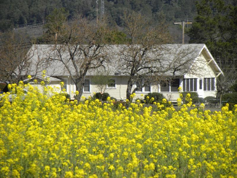 Testa House - Image 1 - Ukiah - rentals