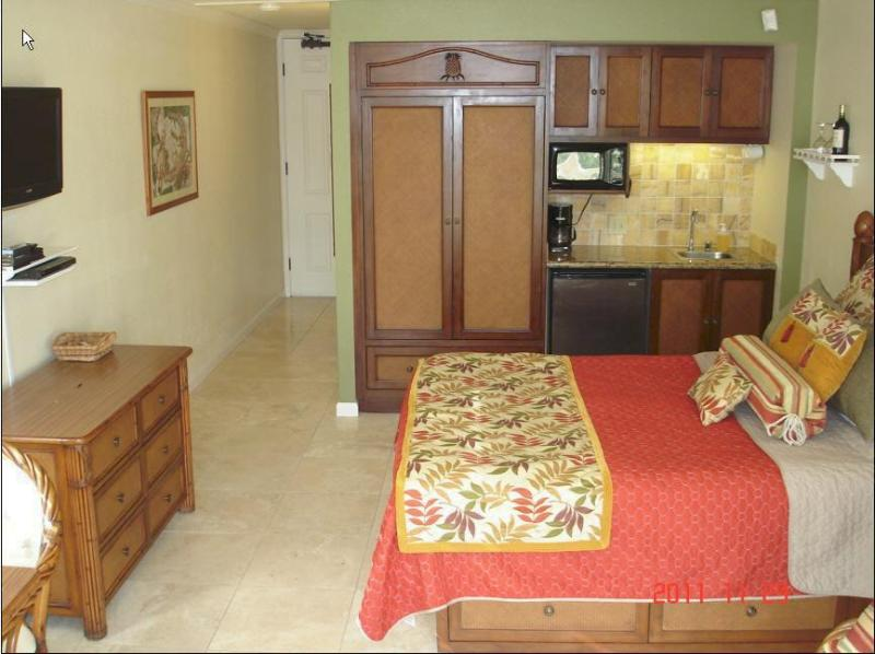 Unit 244 - $84-$104-Oceanfront Resort/Oceanview Units244/256 - Kapaa - rentals