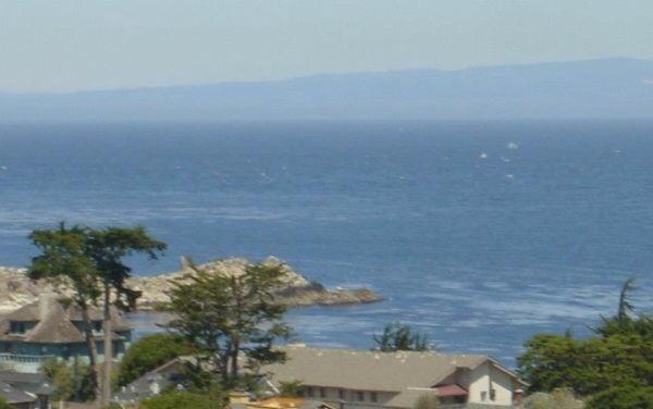 Amazing Ocean Views, walk to Aquarium - Image 1 - Pacific Grove - rentals