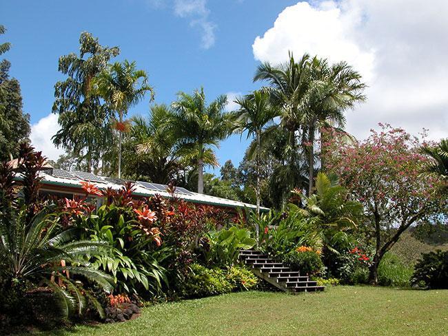World Class Garden Residence - Image 1 - Pahoa - rentals