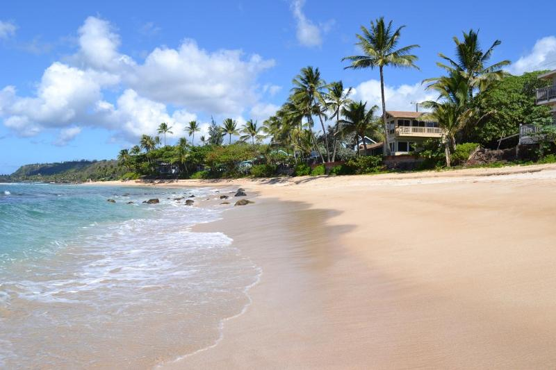Hale Moana, house of the sea - Beachfront Home, Ocean Views From Every Room - Haleiwa - rentals