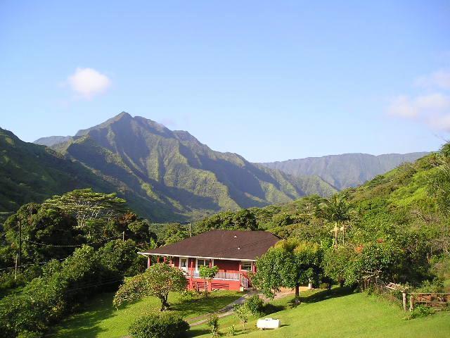 Ivys Mountain Retreat. - Ivy's Place Kauai Vacation Cottage Wainiha Kauai - Haena - rentals
