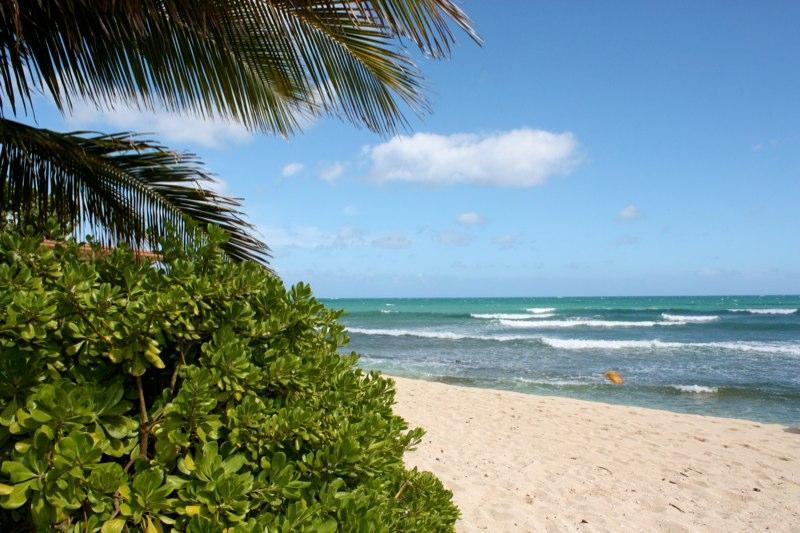 Wonderful beach out front...views of Honolulu city lights - Luxury on the BEACH....3300sq ft. - Ewa Beach - rentals