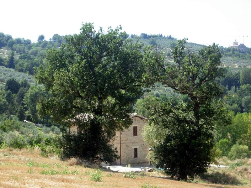 Cerqueto apartments - Apartment in the Green Heart of Italy (Umbria) - Bevagna - rentals