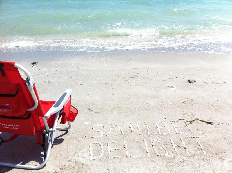 Pristine shell strewn beaches - Sundial Resort - Amazing Gulf View - Sanibel Island - rentals