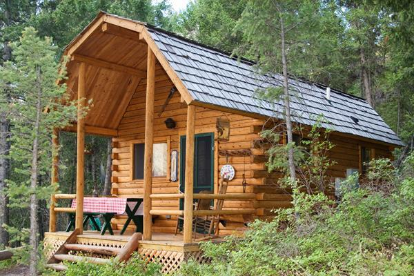 Mountain log cabin at Williams Lake - IDAHO LOG CABIN AT WILLIAMS LAKE-SLEEPS 6 - Salmon - rentals