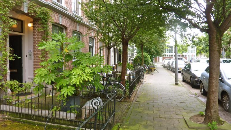 Safe, green, residential area - BB10 Amsterdam  DeLuxe Apartment in 1881 Townhouse - Amsterdam - rentals