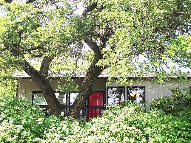 Surrounded by trees, sunshine and shade! - The Kaleido House - uniquely Austin - near Zilker! - Austin - rentals