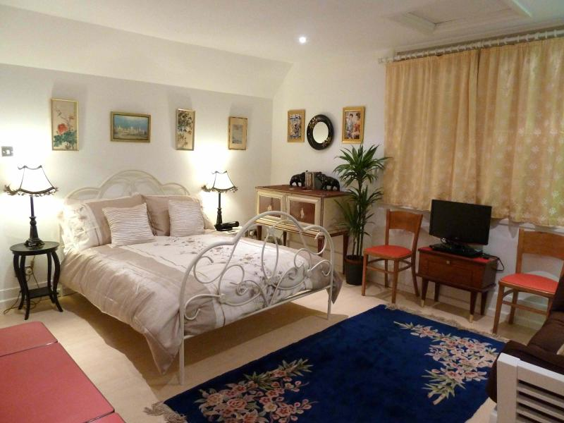 Your gracious living room bedroom - Kemptown Atelier - Brighton - rentals