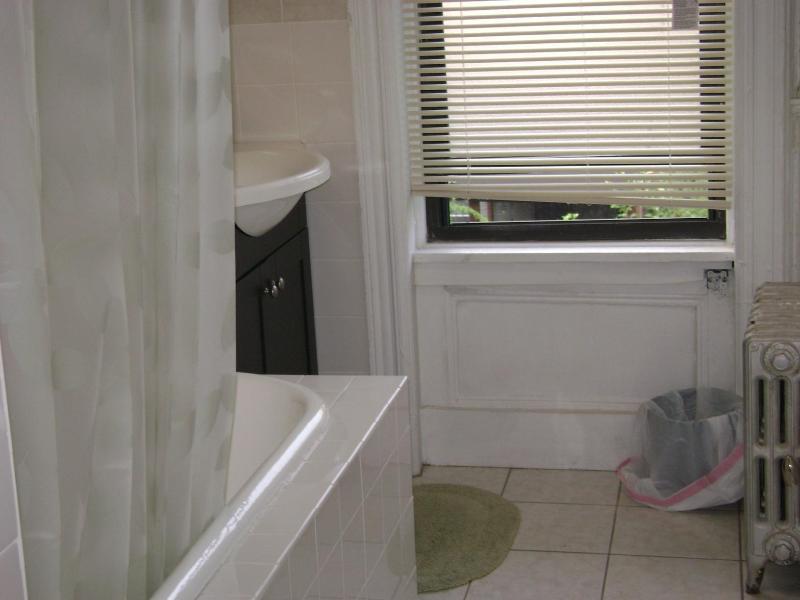 two bedroom apartment overlooking a garden - Image 1 - New York City - rentals