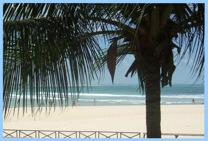 The View from Serena - beautiful expanse of beach - Serena - Beach Front Villa - Spectacular Sea Views - Pipa - rentals