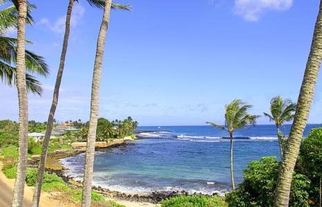 Prince Kuhio Condo, Ocean VIEW - Prince Kuhio Condominiums, OCEAN VIEW, 1BR/1BA - Poipu - rentals