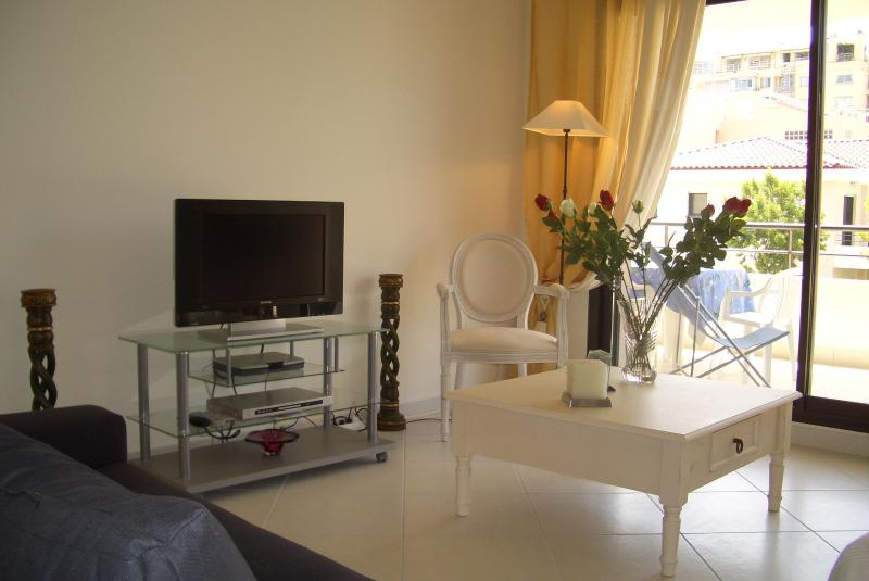 The living room and terrace - Luxury 3 bedroom apartment @ 90 rue d'Antibes - Cannes - rentals