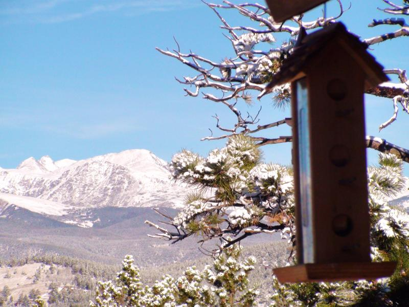View out Kitchen Window, November - Luxury Log Cabin Estate, 120 acre Mountain Ranch! - Black Hawk - rentals