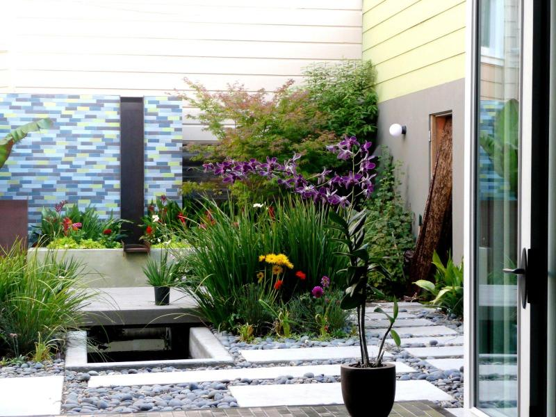 backyard looking from inside the hosue - 20% discount NOW! - San Francisco 5 bedroom Home - San Francisco - rentals