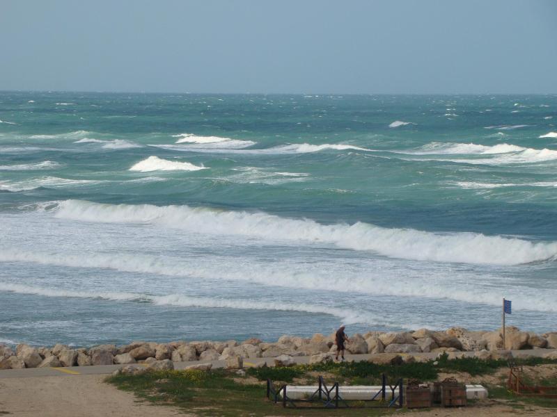 Sea View - Sea View Apartment - Herzlia - rentals