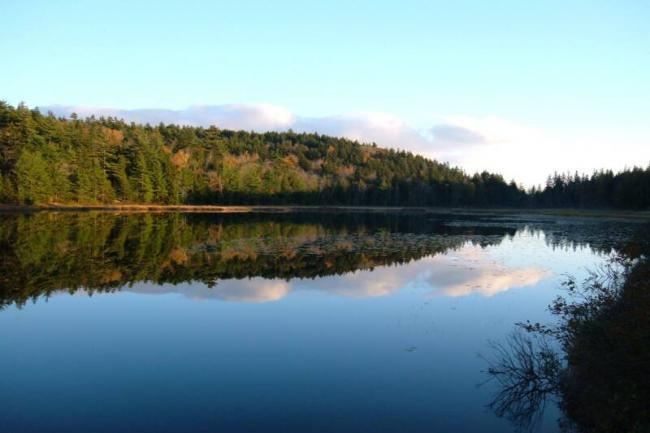 Hodgdon Pond 2 - Image 1 - Seal Cove - rentals