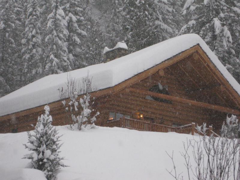 Winter wonderland - Skier's Paradise - Revelstoke - rentals