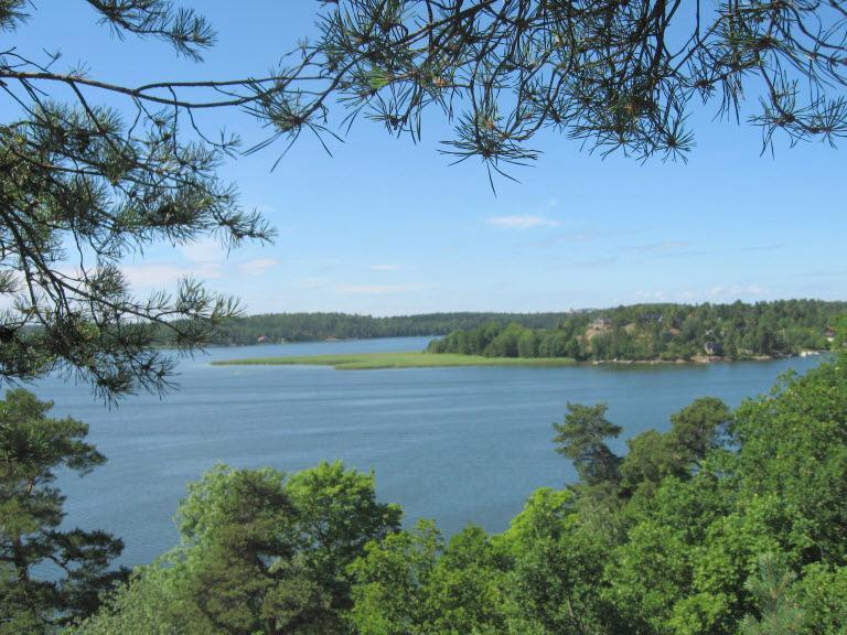 Lake View - In nature,  only 10 min drive from Stockholm city - Stockholm - rentals