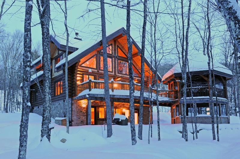 Sit by the warm fireplace and watch the deer pass in your backyard. - Chalet RiverLog - Mont Tremblant - rentals