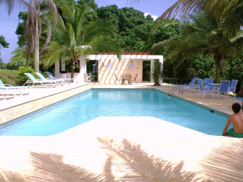 Villa Bonita Swimming Pool and Gazebo Area - Villa Bonita - 8 apts $110 ea or less p/n s-50! - Aguadilla - rentals
