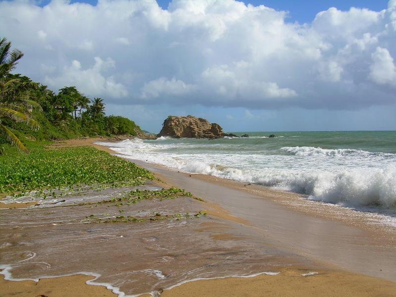 THE ROCK ON YOUR BEACH - Casa Del Mar - Yabucoa - rentals