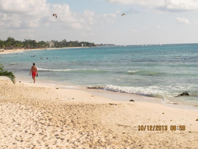 PLAYA:) 25 MTS FROM HILHAVEN* - * HILHAVEN*1 Blk To Beach & 1 Blk To Ave Quinta* - Playa del Carmen - rentals