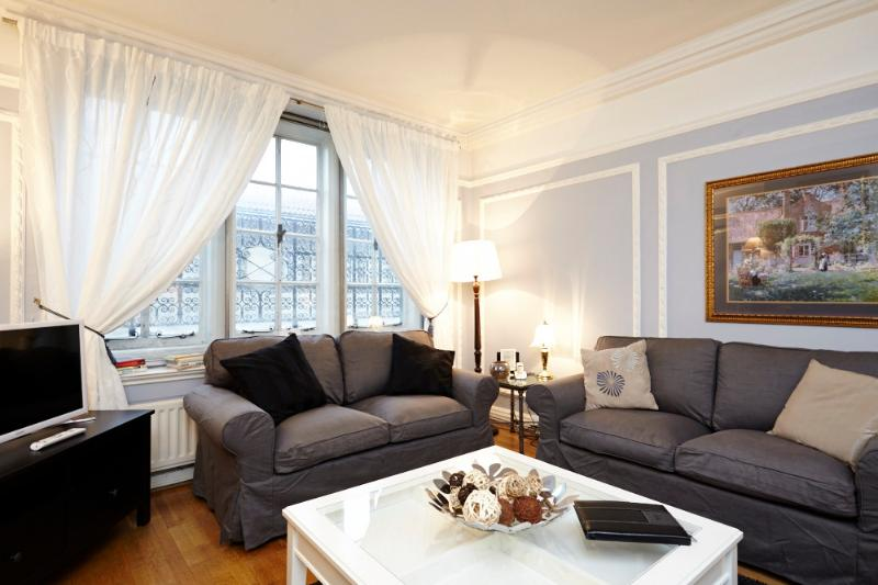 Beautiful brand new furniture - USD! 2 Bed 1 Bath in Piccadilly Circus (2-167) - London - rentals