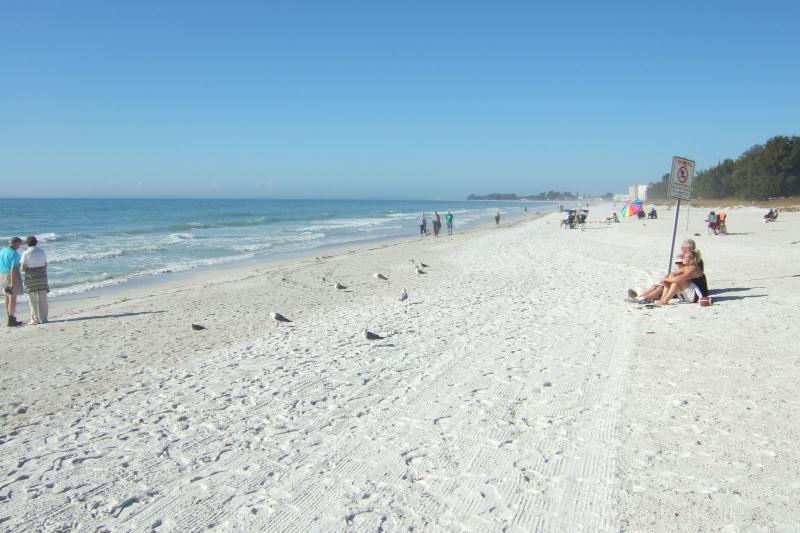 Beach - Holmes Beach 2 bdrm Condo near beach,  pool - Holmes Beach - rentals