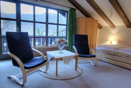 Living Room (2) - Single Room in Garmisch-Partenkirchen - 474 sqft, panoramic views, convenient location (# 944) - Garmisch-Partenkirchen - rentals
