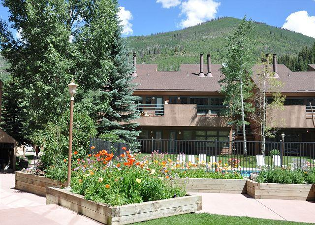 Pitkin Creek Building 6 - Nicely finished one bedroom next to hot tub and pool in East Vail. - Vail - rentals