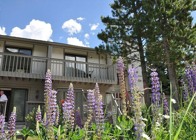 Back deck - Gore Creek Meadows K1 Duplex - Vail - rentals