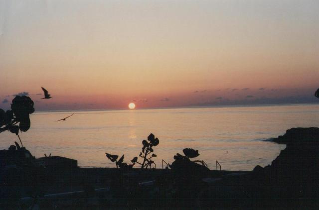 Ocean Wave: Indigo - Image 1 - Cayman Brac - rentals