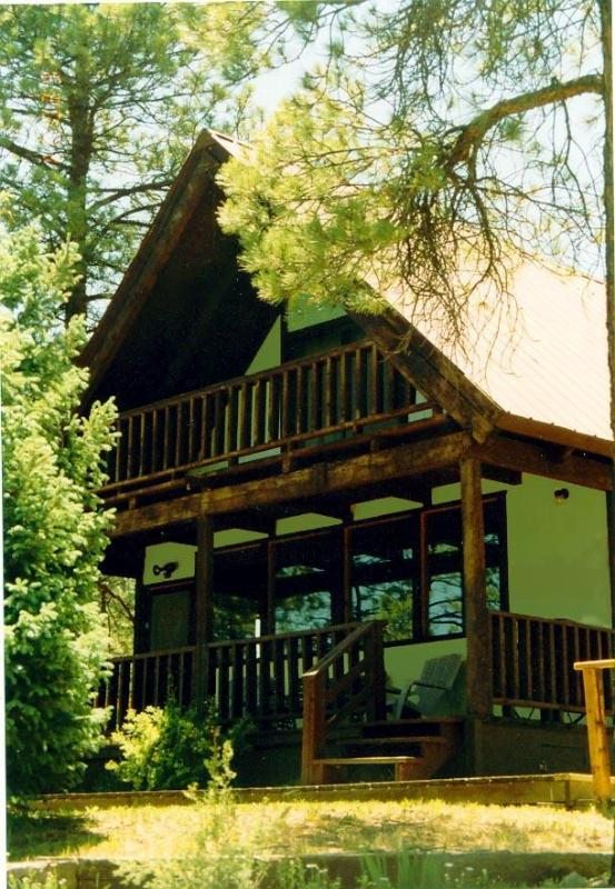 Adventures at Serendipity Mountain Home - Serendipity Mountain Home & Studio - Pagosa Springs - rentals