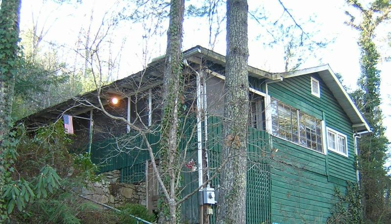 Lofty Treehouse  relax in the woods - Treehouse Cottage - Hendersonville - rentals