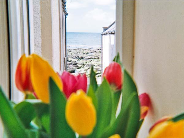 ELLIE-ANN COTTAGE, pet friendly, character holiday cottage, with a terrace in Gardenstown, Ref 8887 - Image 1 - Gardenstown - rentals