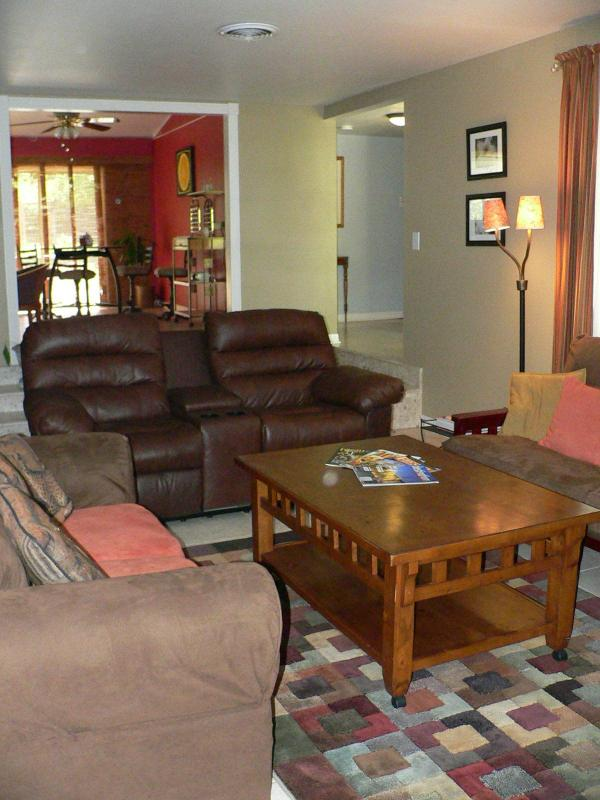 Living Room 1 - Minutes From Most San Antonio Area Attractions - San Antonio - rentals